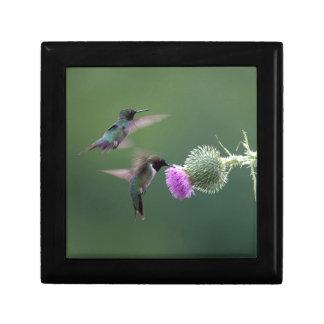 Kolibri Geschenkbox
