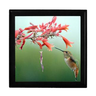 Kolibri-Geschenkboxen Große Quadratische Schatulle