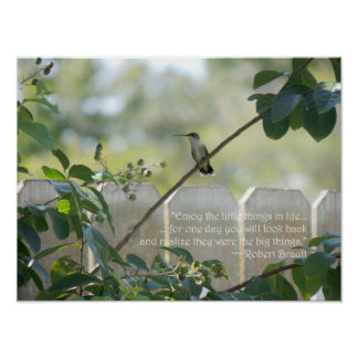 """Kolibri-Plakat mit """"Kleinigkeits-"""" Zitat Poster"""