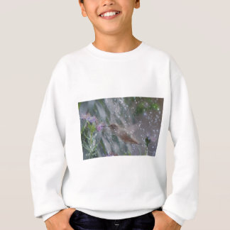 Kolibri - spielend im Regen Sweatshirt