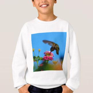 Kolibri Sweatshirt