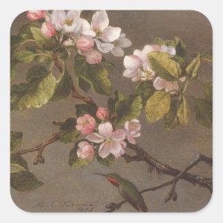 Kolibri und Apple-Blüten Quadratischer Aufkleber