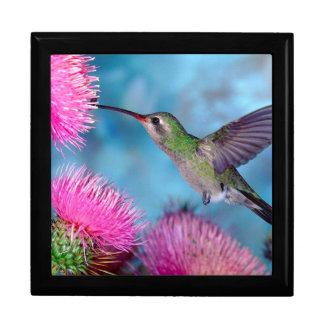 Kolibri und Blumen/behalten Grund/Geschenkboxen Erinnerungskiste