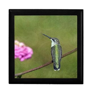 Kolibri und Zinnia Geschenkbox