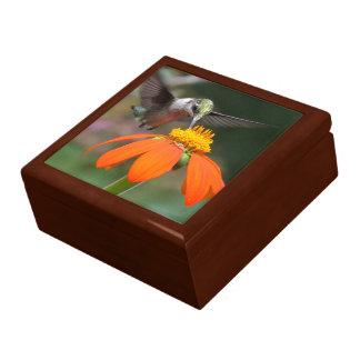 Kolibri-Vogel-Tierblumentier-Sonnenblume Geschenkbox