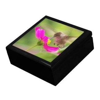 Kolibri-Vogel-Tierblumenwild lebende tiere Schmuckschachtel