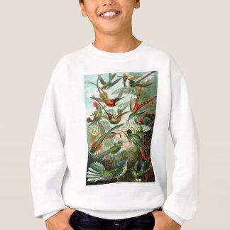 Kolibris Sweatshirt