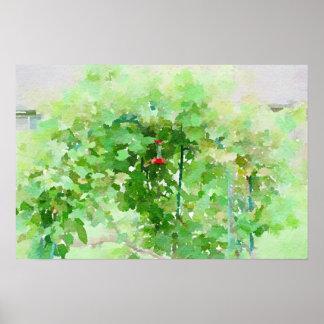 Kolibrizufuhr Watercolor-abstrakte Malerei Poster