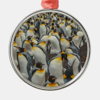 König-Pinguinkolonie, Falkland Silbernes Ornament
