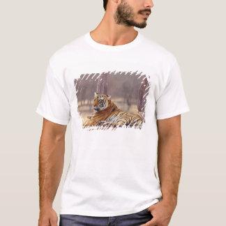 Königlicher bengalischer Tiger am ceaph, T-Shirt