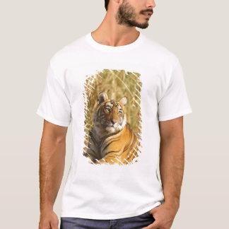 Königlicher bengalischer Tiger außerhalb der T-Shirt