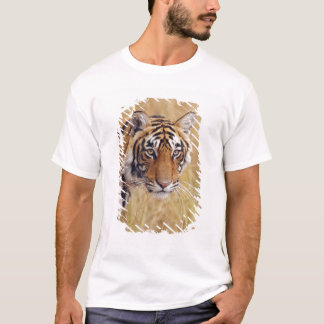Königlicher bengalischer Tiger, der von aufpasst T-Shirt