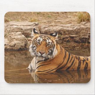 Königlicher bengalischer Tiger im Dschungelteich,  Mousepad