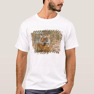 Königlicher bengalischer Tiger im Waldteich, T-Shirt