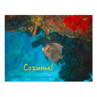 Korallenriff Cozumel Postkarte