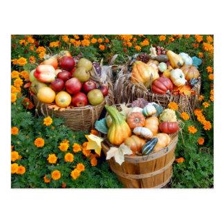Körbe von Herbst-Obst und Gemüse Postkarte