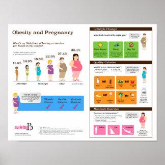 """Korpulenz und Schwangerschaft 14"""" x 11"""" Poster"""