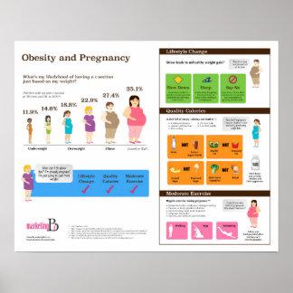 """Korpulenz und Schwangerschaft 20"""" x 16"""" Poster"""