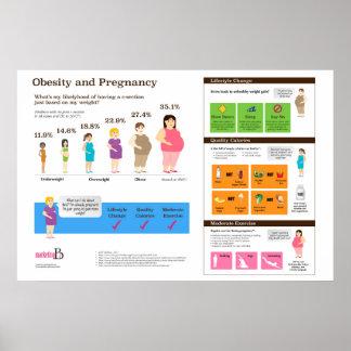 "Korpulenz und Schwangerschaft 6"" x 24"" Infographic Poster"
