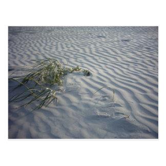 Kräuselungen im Sand Postkarte