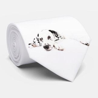 Kravatte Dalmatiner Krawatte