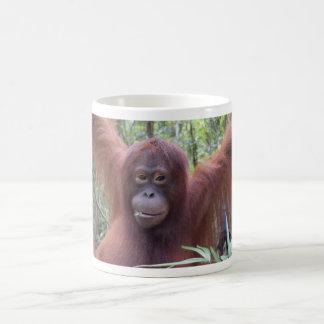 Krista Orang-Utan Borneo-Regenwald-Flirt Tasse
