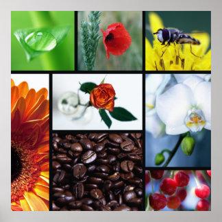 Küchenbild Natur im Herzen Poster
