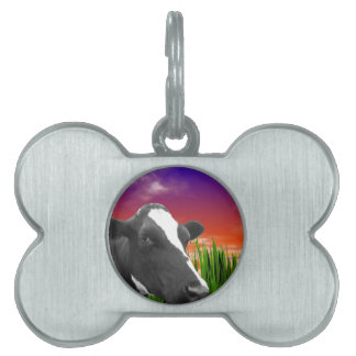 Kuh auf Gras u. klarem Sonnenuntergang-Himmel Tiermarke