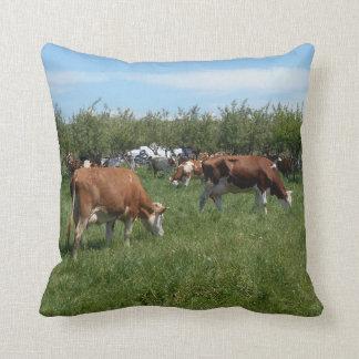 Kühe in der Weide Kissen