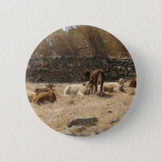 Kühe Runder Button 5,7 Cm