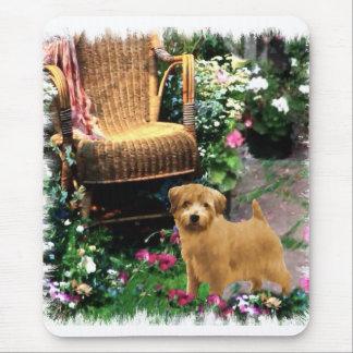 Kunst-Geschenke Norfolks Terrier Mauspads