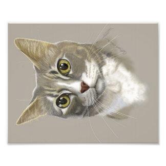 Kunst-Katzenporträt des Fotodruckes 8x10 digitales Fotodruck