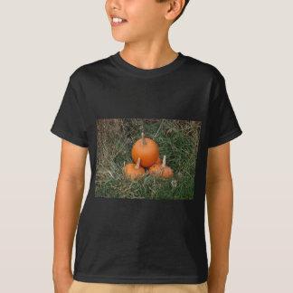 Kürbise T-Shirt