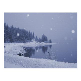 Küsten-Schneefall-Postkarte Postkarte