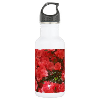 Lachse farbiges Azeleas Trinkflasche