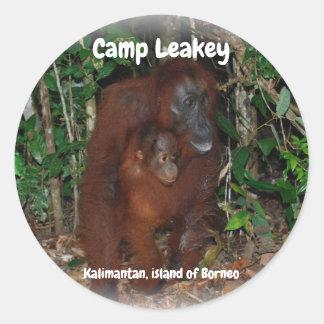 Lager Leakey in Tanjung, das Nationalpark Borneo Runder Aufkleber
