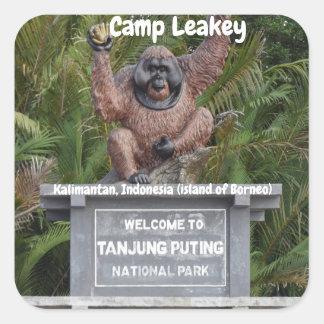 Lager Leakey Tanjung, das Nationalpark setzt Quadratischer Aufkleber
