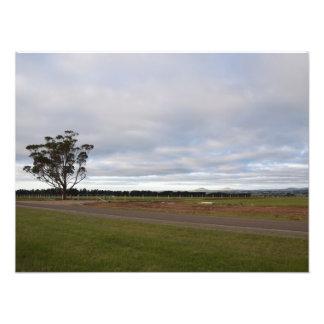 Land-Land (Foto-Druck)