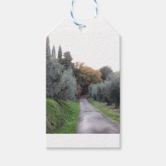 Ländliche Landschaft im Herbst. Toskana, Italien Geschenkanhänger
