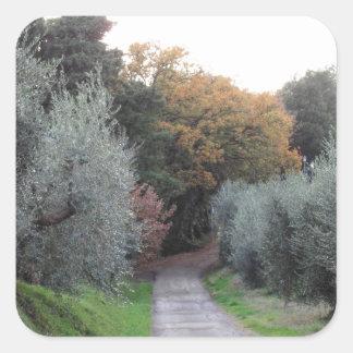 Ländliche Landschaft im Herbst. Toskana, Italien Quadratischer Aufkleber