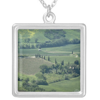 Landschaft nahe Montepulciano, Val d'Orcia, Versilberte Kette