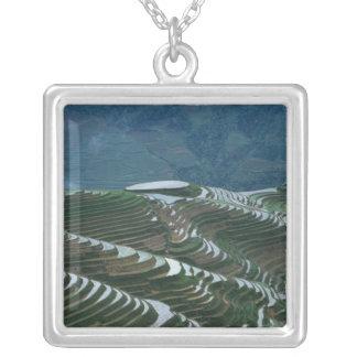 Landschaft von Reisterrassen im Berg, 2 Versilberte Kette