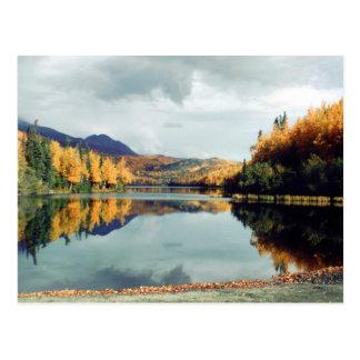 Langer See-Staats-Park Postkarte