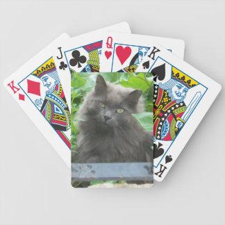 Langhaarige graue russische blaue Katze Pokerkarten