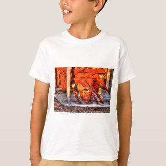 LASTWAGEN-RAD LÄNDLICHES QUEENSLAND AUSTRALIEN T-Shirt