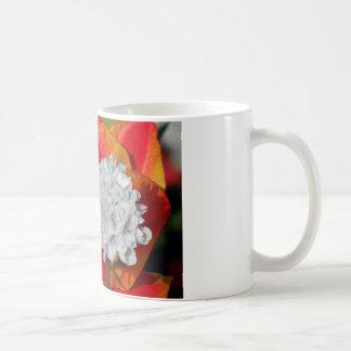 Lauch und Tulip.jpg Tasse