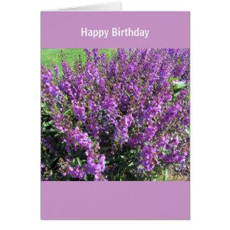 Lavendel-Blumen-Geburtstags-Wünsche Karte