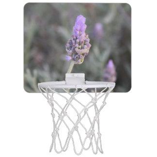 Lavendel-Fotografie weich und hübsch Mini Basketball Netz