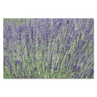 Lavendel mit Blumen Seidenpapier