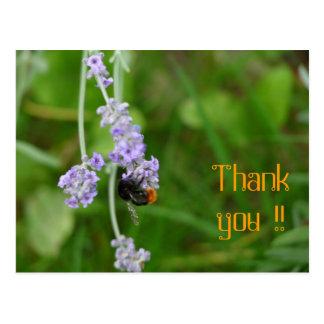 Lavendel mit Hummel Danke Grußkarte Postkarten